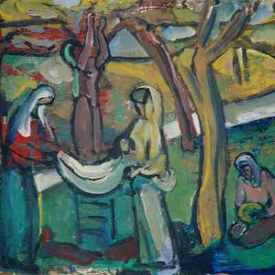 Gathering in the Olives